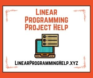 Linear Programming Project Help